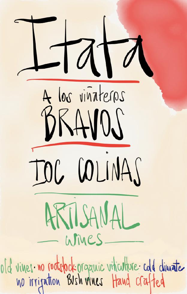 A Los Vinateros Bravo