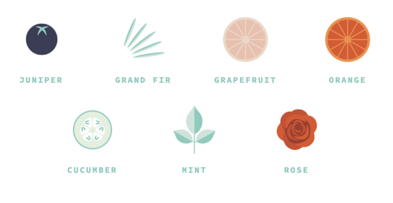 illustration of botanicals used in Lumette Bright Light Alt-Gin